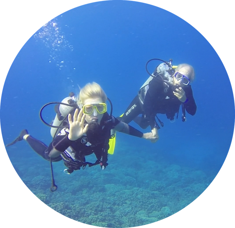 https://tahititourisme.nz/wp-content/uploads/2017/08/Divers-in-the-first-try.png
