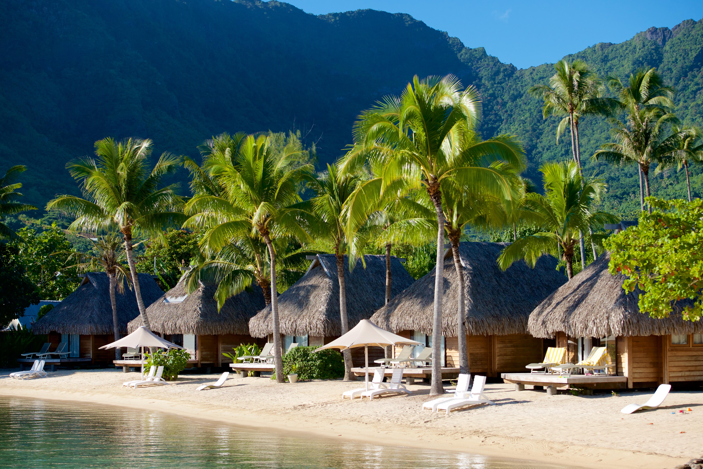 https://tahititourisme.nz/wp-content/uploads/2017/08/HEBERGEMENT-Manava-Beach-Resort-and-Spa-Moorea-2-Tim_McKenna.jpg