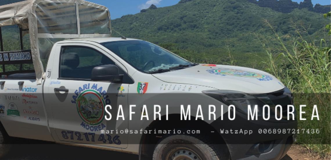 https://tahititourisme.nz/wp-content/uploads/2017/08/Safari-Mario-Moorea.png