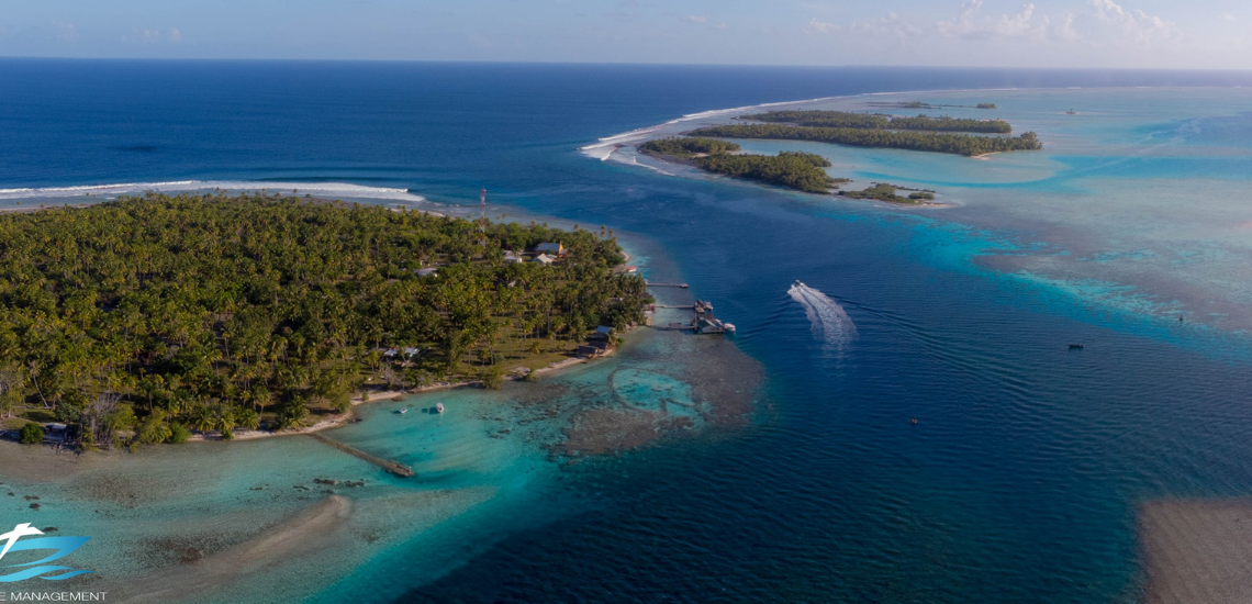 https://tahititourisme.nz/wp-content/uploads/2017/08/Tahiti-Dive-Management.png