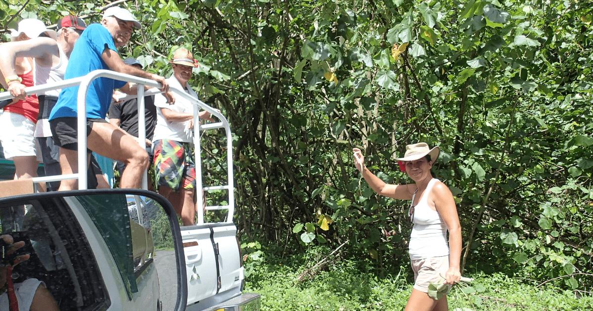 https://tahititourisme.nz/wp-content/uploads/2017/08/Tahiti-Safari-Expeditions_1140x500-min.png