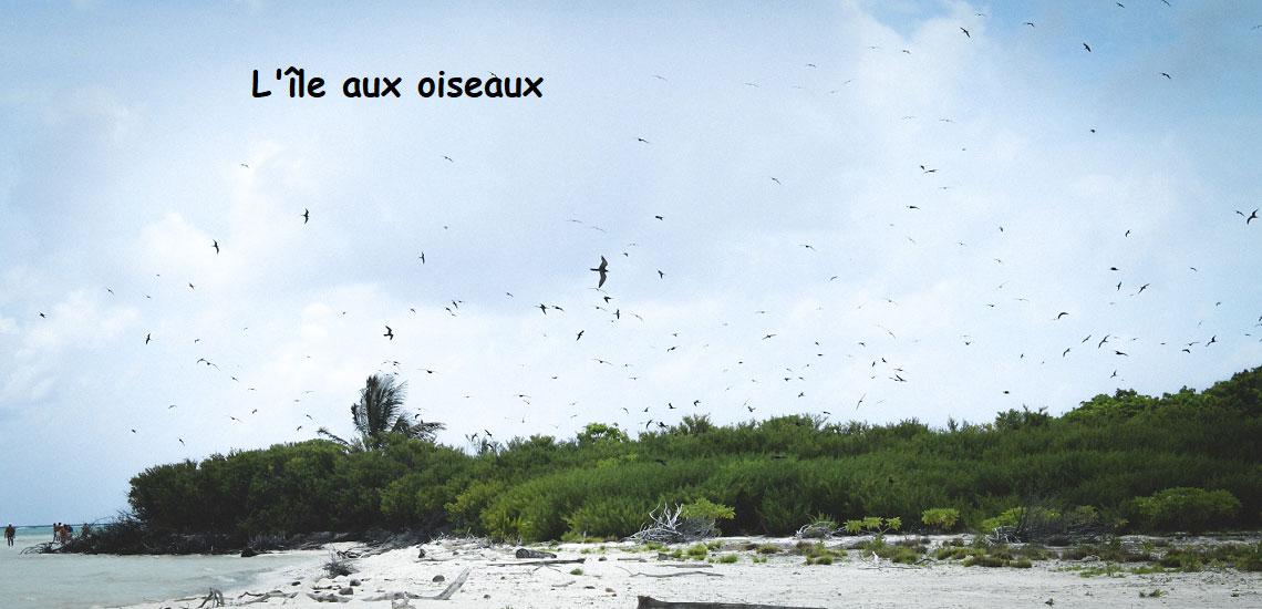 https://tahititourisme.nz/wp-content/uploads/2017/08/Tahiti-Voile-et-Lagon-photo-de-couv-2.jpg