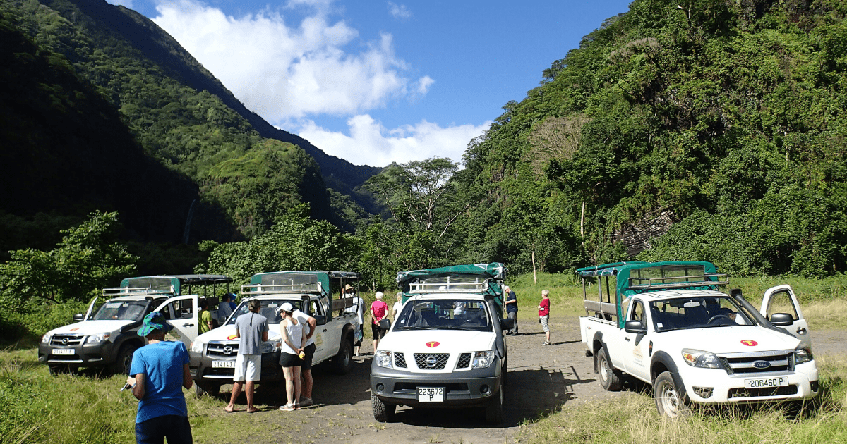 https://tahititourisme.nz/wp-content/uploads/2017/08/TahitiSafariExpeditions2_1140x550-min.png