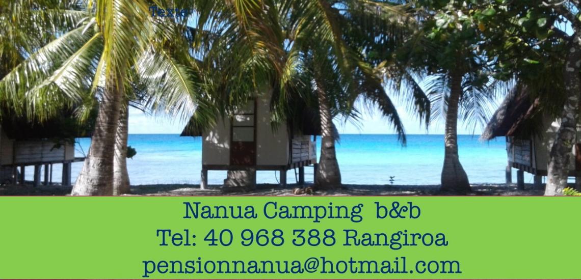 https://tahititourisme.nz/wp-content/uploads/2017/08/nanuacamping_1140x550.png
