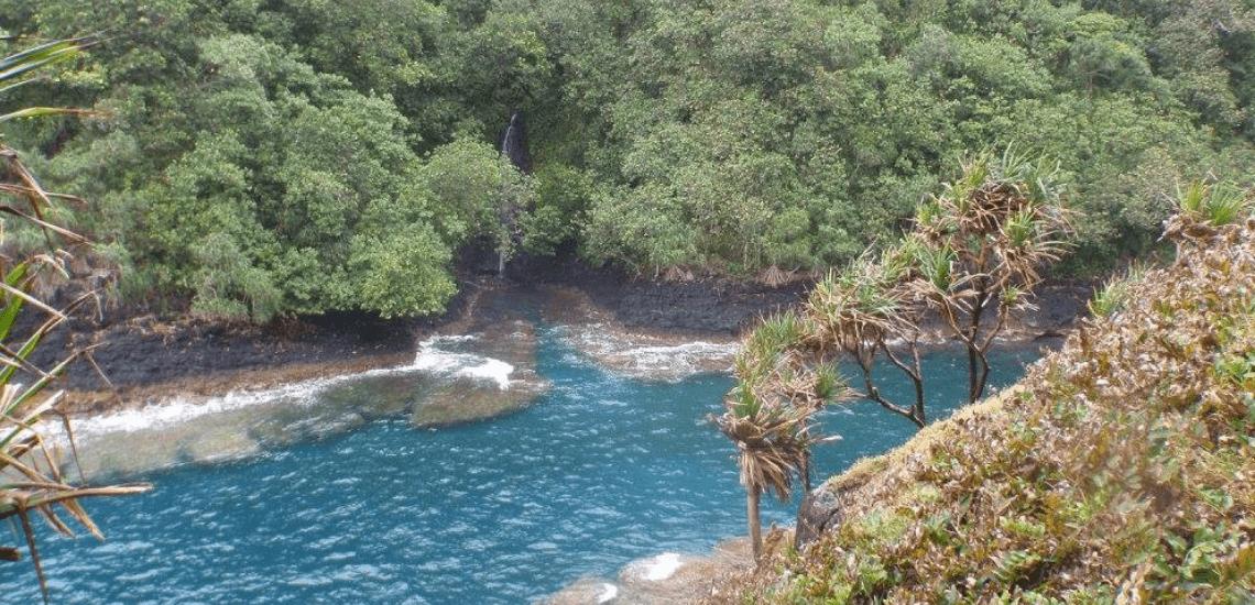 https://tahititourisme.nz/wp-content/uploads/2017/08/tahitirevatrekphotodecouverture1140x550.png
