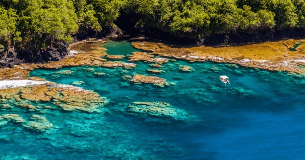 https://tahititourisme.nz/wp-content/uploads/2017/09/TahitiItiToursSurf_1140x550-min.png
