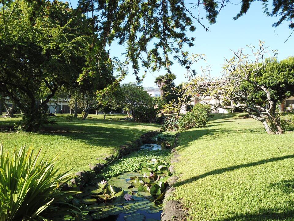 https://tahititourisme.nz/wp-content/uploads/2017/09/jardin-vue-1.jpg
