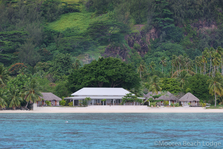 https://tahititourisme.nz/wp-content/uploads/2017/11/mblh_page_lodge_5_new.jpg