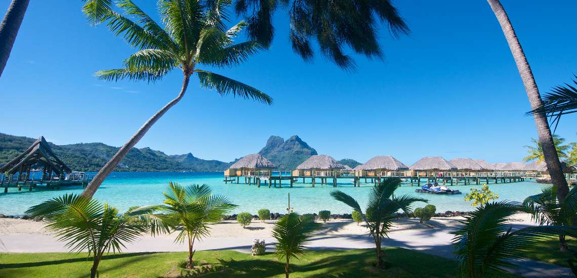 https://tahititourisme.nz/wp-content/uploads/2017/12/947-hiResolution-14-06-SPM-4177_600.jpg