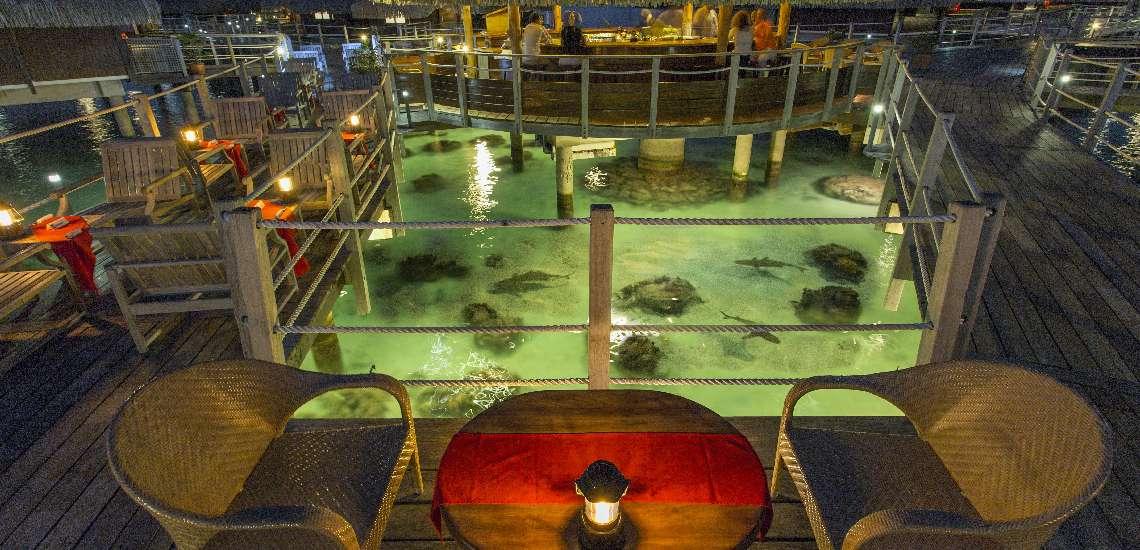 https://tahititourisme.nz/wp-content/uploads/2017/12/Hilton-Moorea-Lagoon-Resort-Spa-Restaurant-Toatea-Creperie-Bar-2_600.jpg