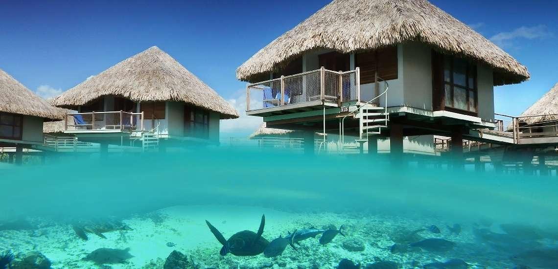 https://tahititourisme.nz/wp-content/uploads/2017/12/Overwater-bungalow-Exterior_600-1.jpg