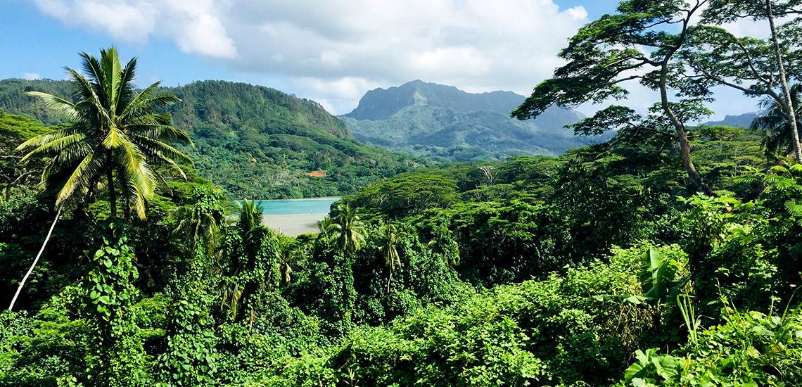https://tahititourisme.nz/wp-content/uploads/2018/05/ACTIVITES-TERRESTRES-Green-Tours-Huahine-2.jpg