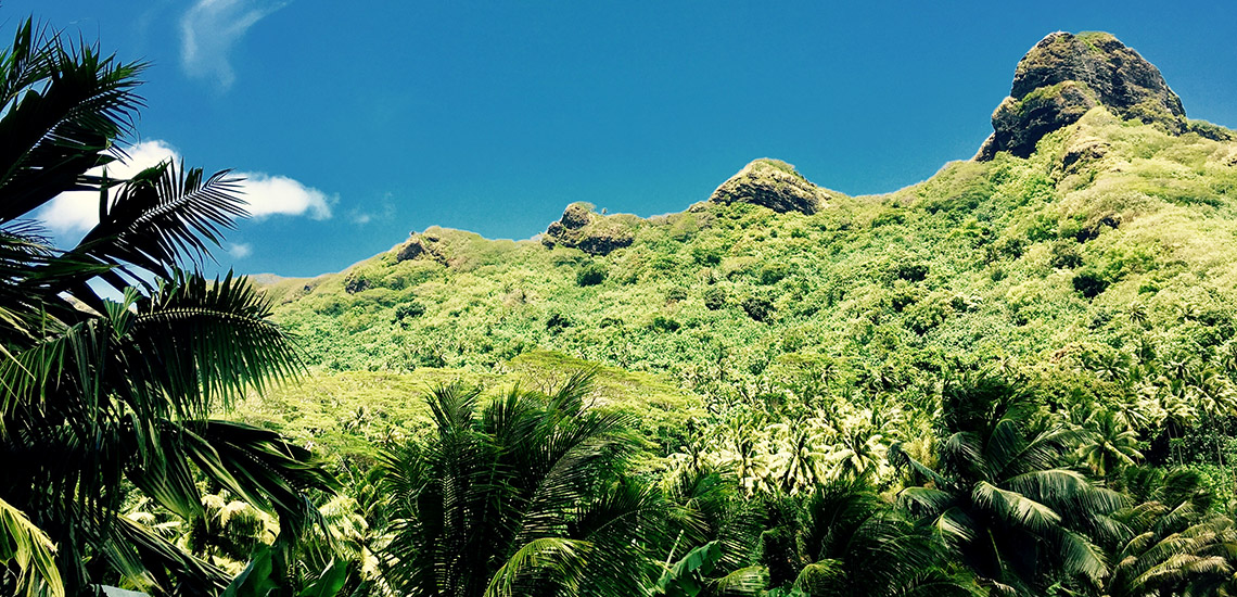 https://tahititourisme.nz/wp-content/uploads/2018/05/ACTIVITES-TERRESTRES-Green-Tours-Huahine-3.jpg