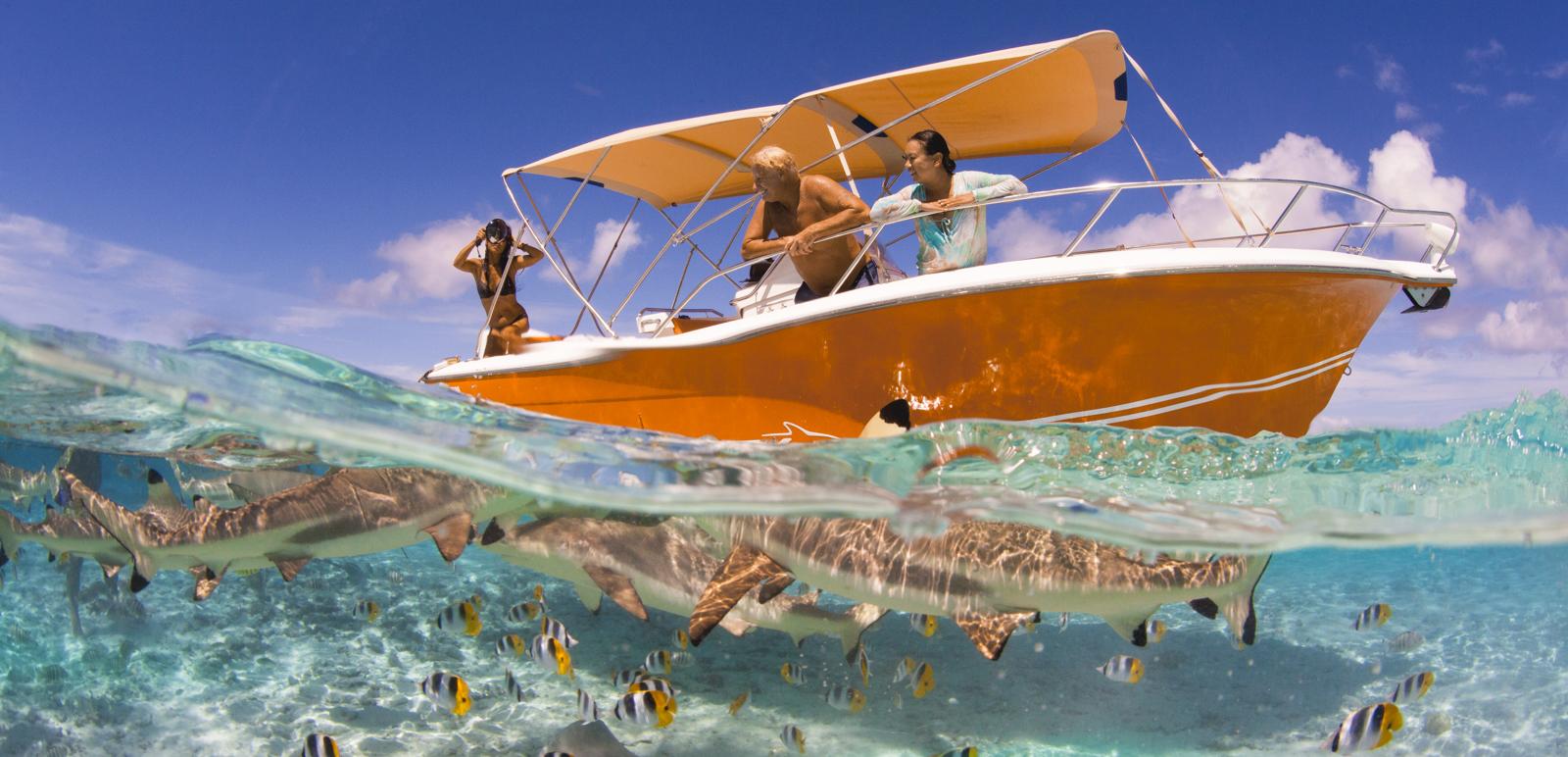 https://tahititourisme.nz/wp-content/uploads/2019/01/BOB-location-bateaux_couv1.jpg
