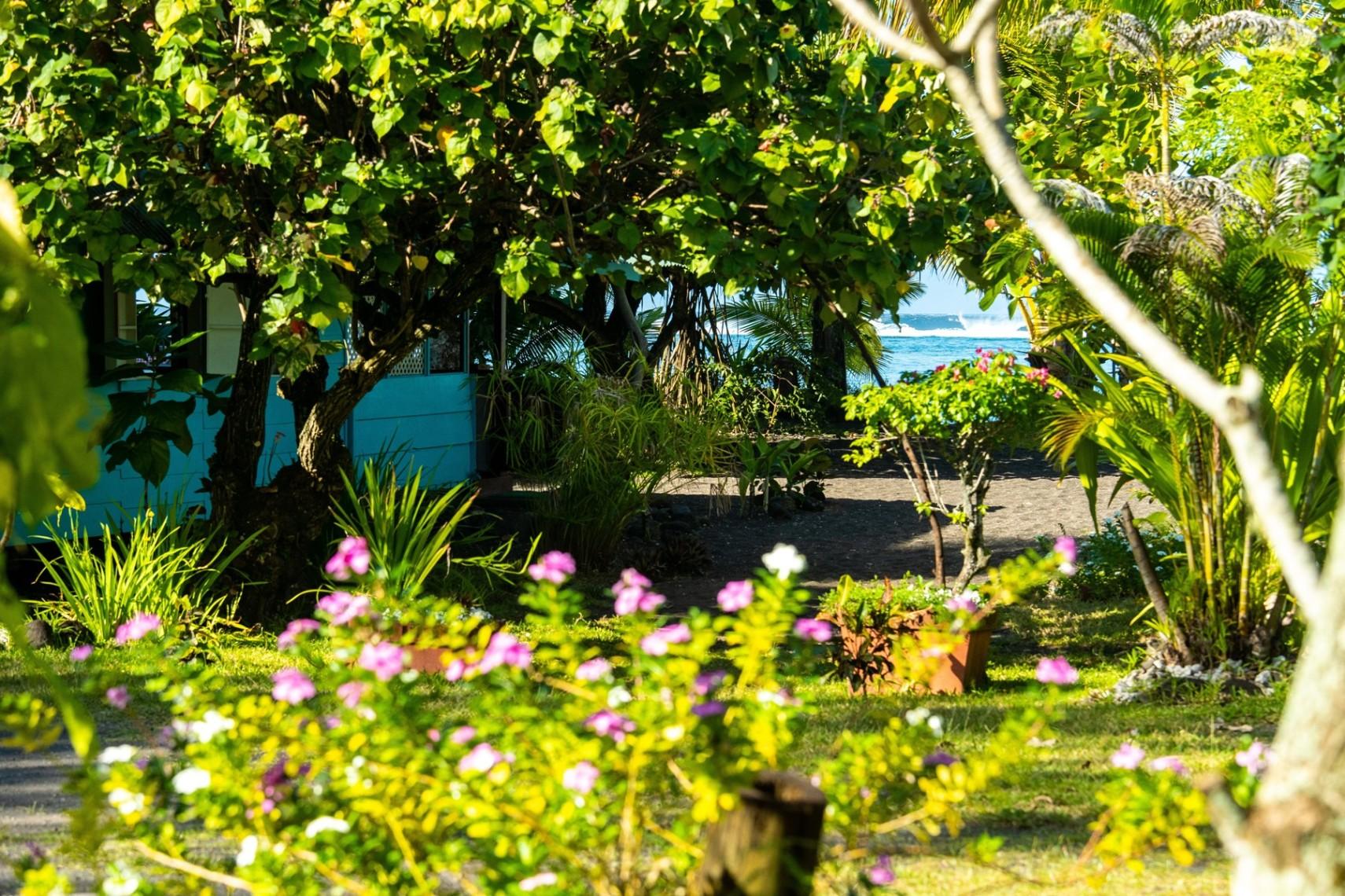 https://tahititourisme.nz/wp-content/uploads/2019/08/copie-tahiti-tourisme-800ko-1.jpg
