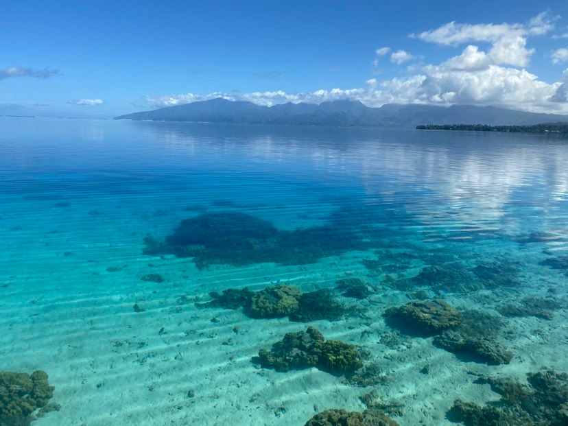 https://tahititourisme.nz/wp-content/uploads/2020/09/118979505_675979593016638_5256249963124799046_n.jpg