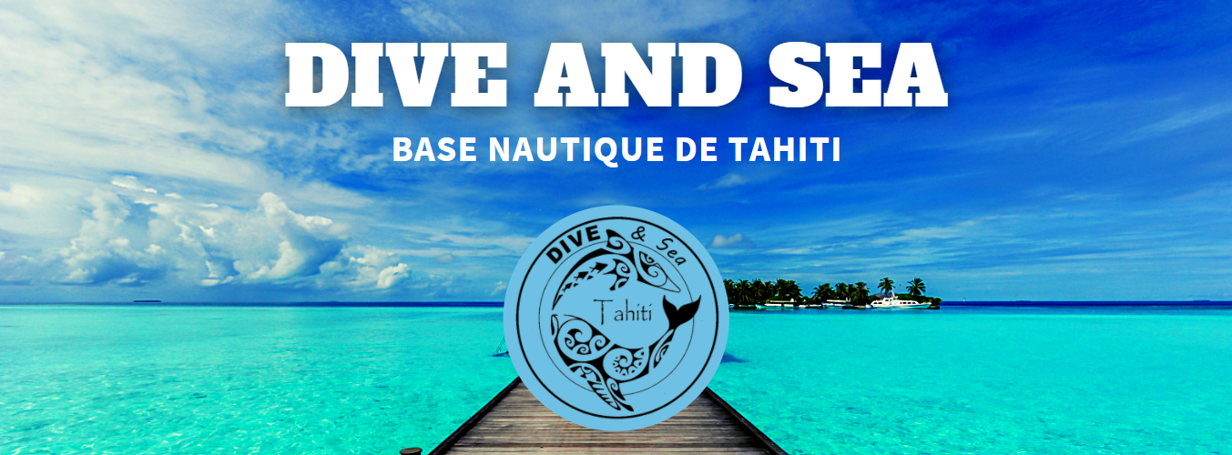 https://tahititourisme.nz/wp-content/uploads/2020/09/2020-09-05_10-26-45.png