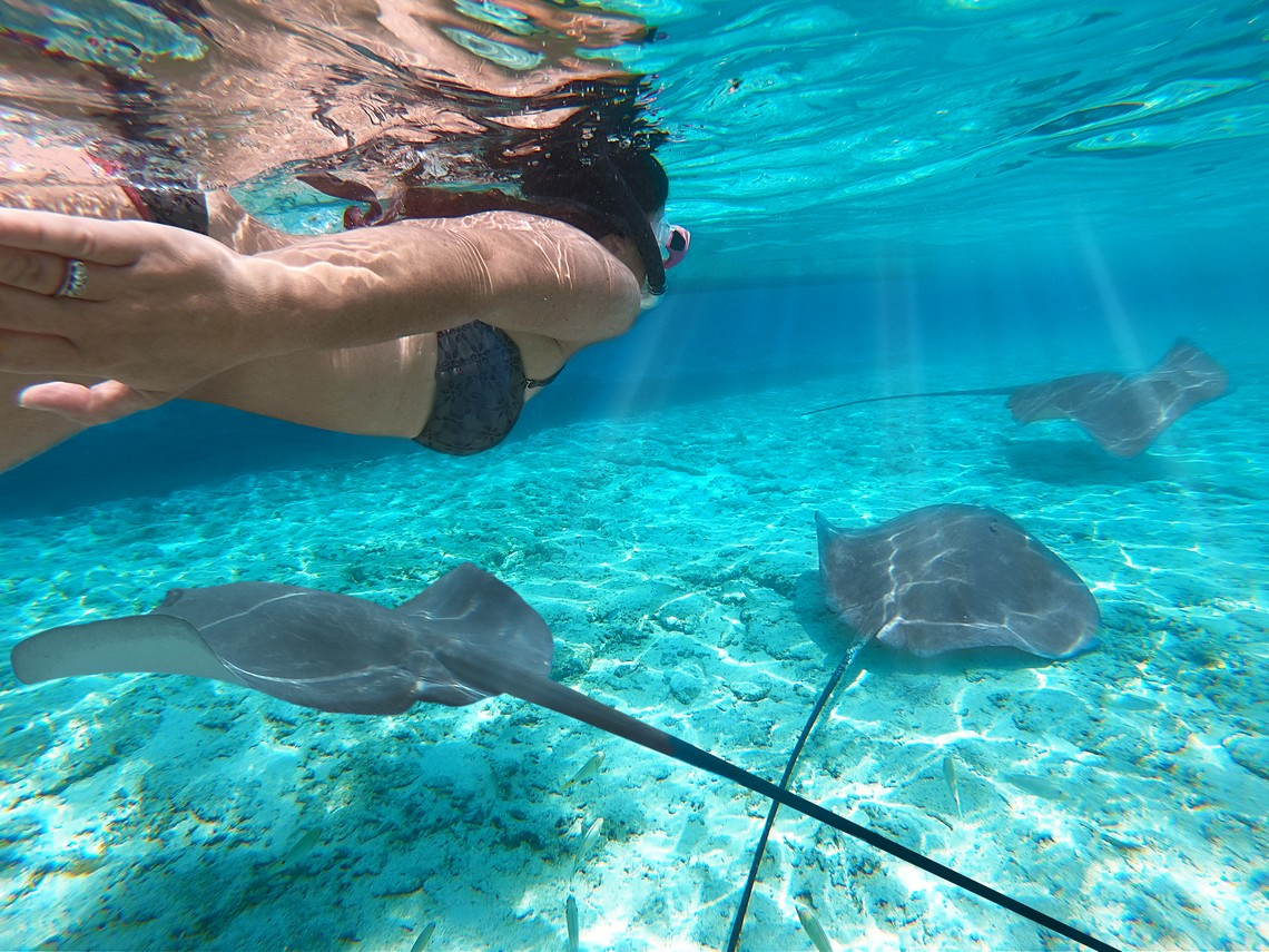 https://tahititourisme.nz/wp-content/uploads/2020/11/Lagoon-Srvice-Bora-Bora-2.jpg