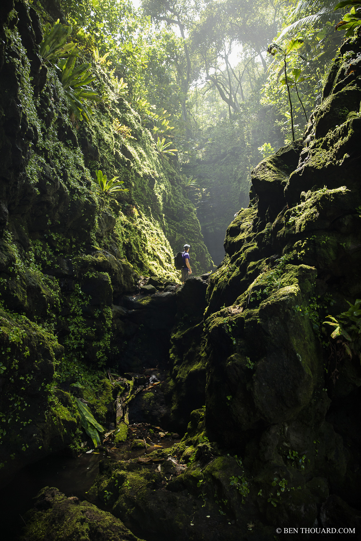 https://tahititourisme.nz/wp-content/uploads/2021/04/benthouard_tepari_hike_0242.jpg